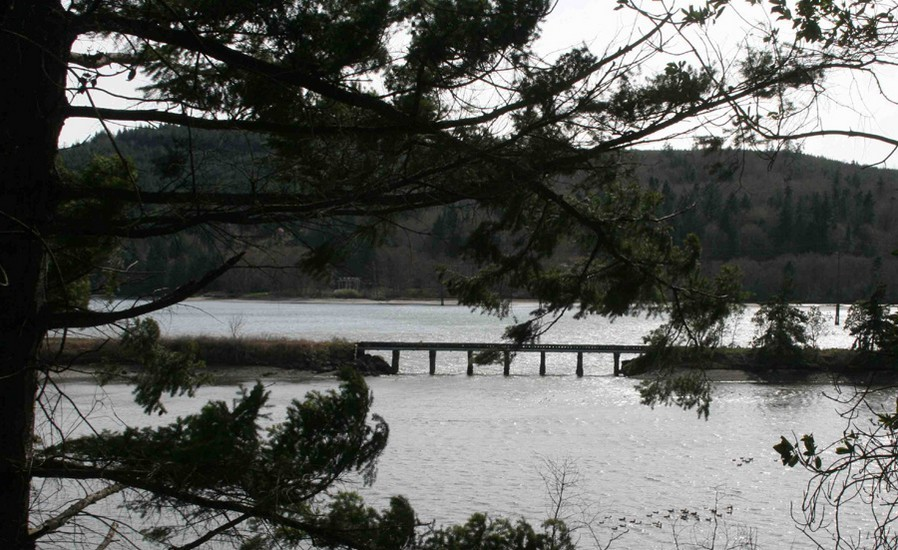 Discovery Bay trestle to be removed